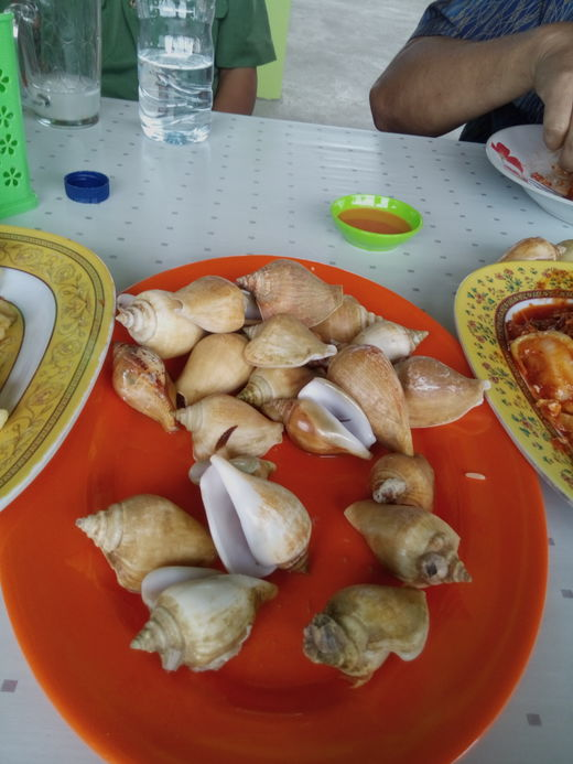 gonggong kuliner khas tanjung pinang